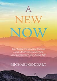 A New Now book cover